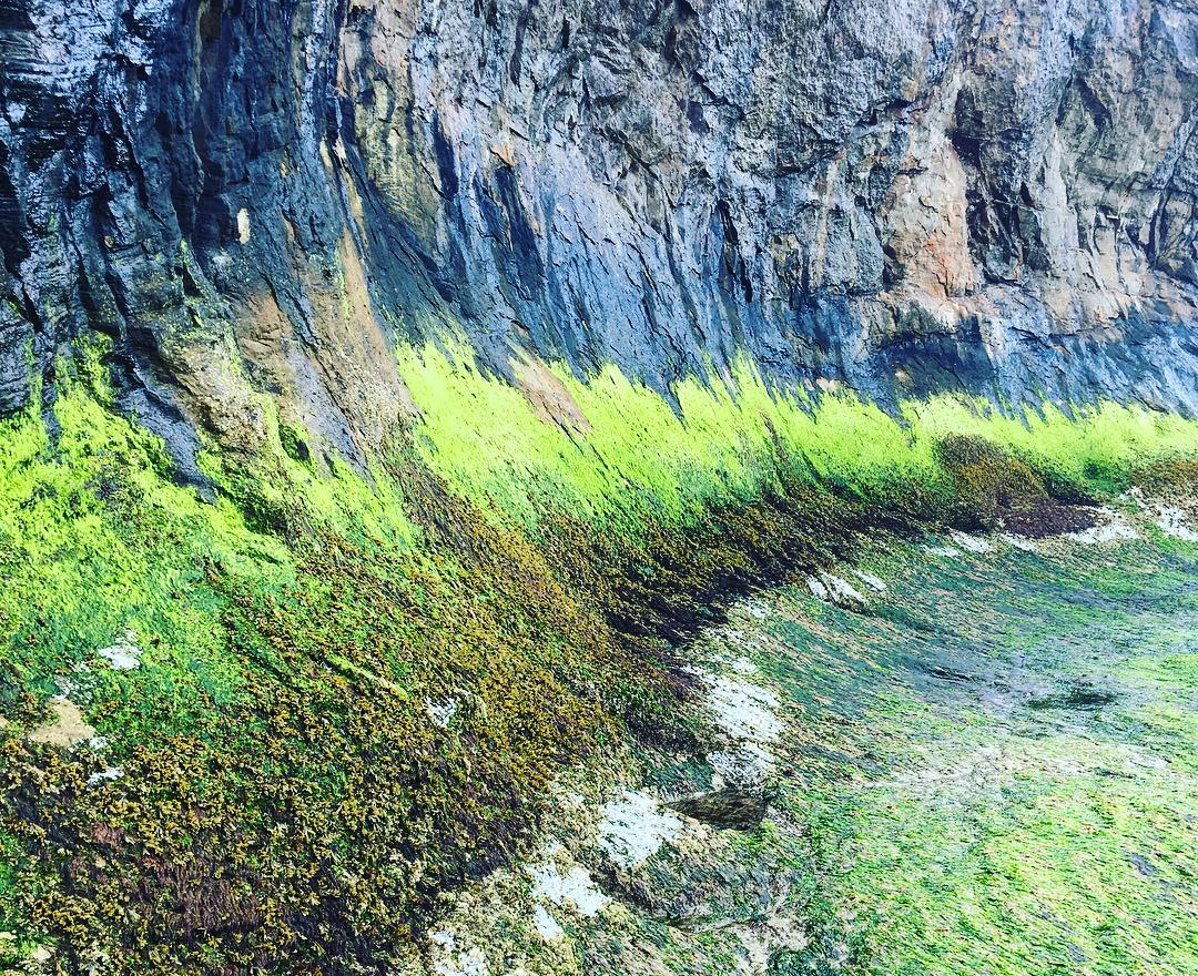 #green #wave #hugpoint #oregon #iadoregon