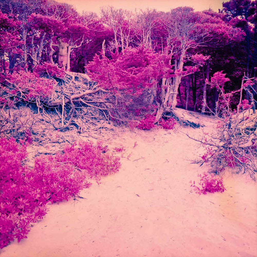 Zalutsky_Sam_Meat Rack 1_Archival Color Print_30 x 30:50 x 50_2018